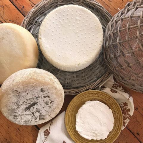 formaggi - Agriturismo La Sequoia